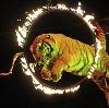 Цирки в Зеленодольске