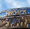 Зоопарки в Зеленодольске